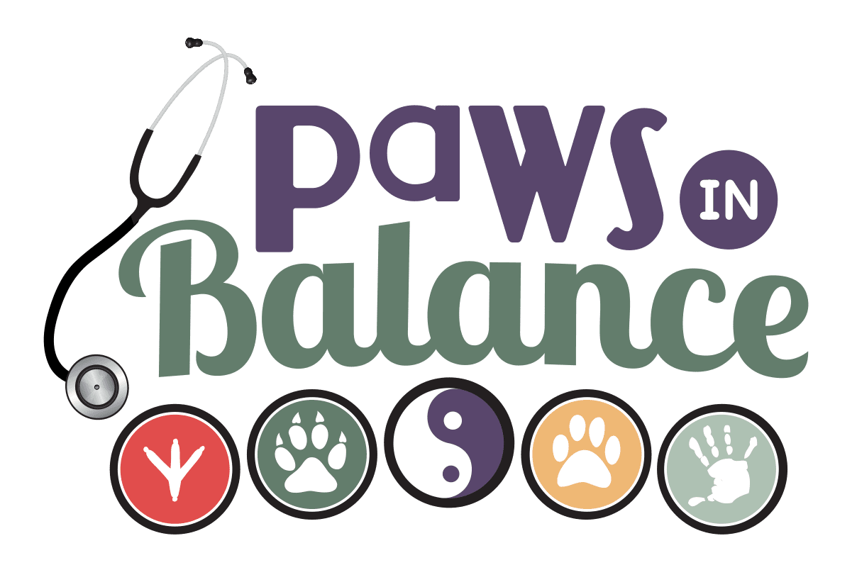 4 Paws in Balance